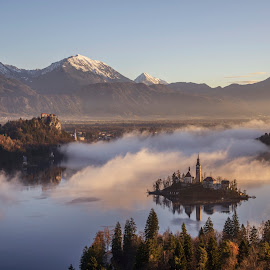 Mystical Sunrise at the Lake in Mountains by Aleš Krivec - Landscapes Mountains & Hills ( water, reflection, europe, church, beautiful, white, forest, lake, scenic, architecture, reflecting, island, mountains, winter, tree, nature, fog, bled, castle, mist )