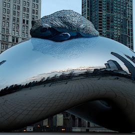 Frog's New Lily Pad by Michelle Cox - Digital Art Places ( cloud gate,  )