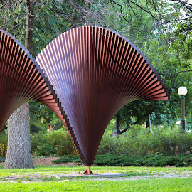 by Mathieu Roy - City,  Street & Park  City Parks