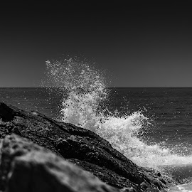 Wet Rocks III by Rodrigo Luft - Landscapes Beaches ( black and white, sea, beach, rocks,  )