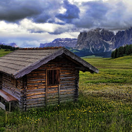 Saltria 13 by Stefano Landenna - Buildings & Architecture Decaying & Abandoned ( cabin, mountain, hdr, dolomites, flowers, italy )