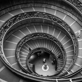 Bramante Staircase by Andrew Doyle - Black & White Buildings & Architecture ( vortex, blue, bramante staircase, gold, vatican, spiral, italy, Architecture, Ceilings, Ceiling, Buildings, Building )