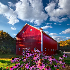 A Little More Country by Phil Koch - Buildings & Architecture Other Exteriors ( vertical, photograph, fine art, yellow, love, sky, tree, nature, barn, autumn, flowers, flower, orange, twilight, agriculture, horizon, portrait, environment, dawn, season, serene, trees, floral, inspirational, natural light, wisconsin, ray, landscape, phil koch, spring, sun, photography, farm, horizons, inspired, clouds, office, park, green, scenic, morning, shadows, wild flowers, field, red, color, blue, sunset, peace, fall, meadow, landscapephotography, summer, beam, earth, sunrise, landscapes, mist,  )