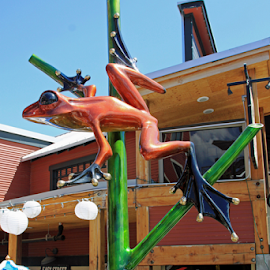 Frogman Frog by Bill Waterman - Animals Amphibians ( sculpture, frog, buildings, cafe, cityscape, landscape, city,  )