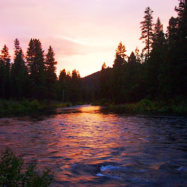 The sunset by Susan McDermitt - Landscapes Sunsets & Sunrises ( sunset, trees, river )