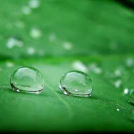 Just 2 of Us by Sengkiu Pasaribu - Abstract Water Drops & Splashes