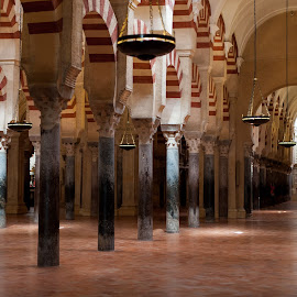 Cordoba by Ljubomir Stevanovic - Buildings & Architecture Places of Worship ( 2013, cordoba, spain, roadtrip )