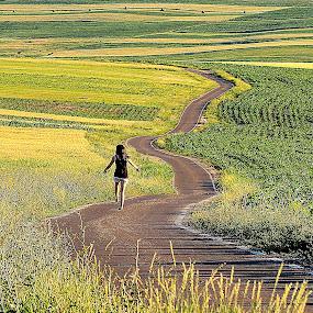 by Cosmin Popa-Gorjanu - Landscapes Prairies, Meadows & Fields