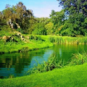 River In Green Scenary Live Wa icon