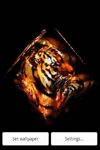 3D 虎3