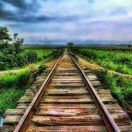 Rel Lori by Randi Pratama M - Transportation Railway Tracks ( railroad )
