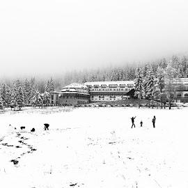 Winter fun by Adrian Mitu - City,  Street & Park  Street Scenes ( winter, fog, snow, trees, snowman, fun )