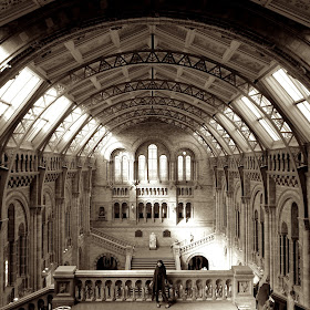 04 - Natural History Museum BW.jpg