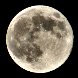 Super Moon by Jason Bleoo - News & Events Science