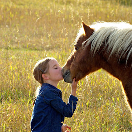 Little love for you by Giselle Pierce - Babies & Children Children Candids ( field, child, miniature horse, kiss, firends, girl, horse, summer, kid )