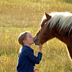 Little love for you by Giselle Pierce - Babies & Children Children Candids ( field, child, miniature horse, kiss, firends, girl, horse, summer, kid )