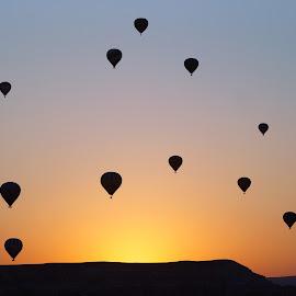 Cappadocia balloons by Gökçe Coşkun - Transportation Other ( baloon, cappadocia ballon, kapadokya, göreme, sun rise, silhouette, ürgüp, cappadocis sunrise, cappadocia balloons, cappadocia )