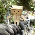 Danbo Wallpaper icon