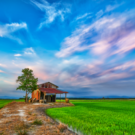 Way to Home by KIN WAH WONG - Landscapes Prairies, Meadows & Fields ( clouds, ruin hut, countryside, home, old hut, paddy field, village, scenery, landscapes, evening )