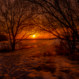 Twin Brooks City Park by Joseph Law - City,  Street & Park  City Parks ( footprints, city parks, winter, twin brooks, cold, snow, trees, walkway, sunshine, edmonton, evening )