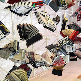 ACCORDIONLY by Jody Frankel - Artistic Objects Musical Instruments ( abstract, musical instrument, accordion, floating )