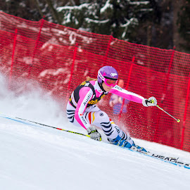 Giant Slalom by Alexander Voda - Sports & Fitness Snow Sports ( skiing, winter, sport, race, photography )