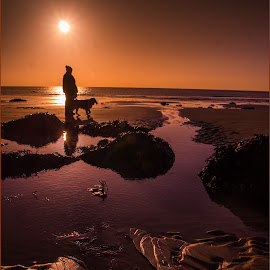 Loving his walk by Andy Smith - Landscapes Beaches ( water, sand, kent, sunrise, beach )
