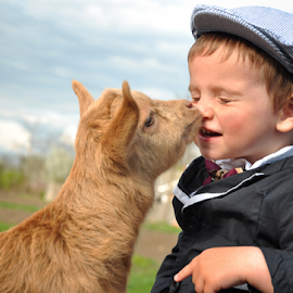sweet kiss by Stancioiu Alina - Babies & Children Child Portraits ( child, kiss, animals, children, portrait )