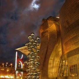 Guggenheim Museum (Bilbao) by Aitor Arana Arruti - Buildings & Architecture Architectural Detail