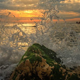 The morning today by Nikolay Stoilov - Landscapes Waterscapes ( wavem seam sunrise, sum water, colorful, varna, beach, morning )