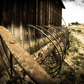 Old Farm Equipment by Antal Ullmann - Buildings & Architecture Decaying & Abandoned ( farm, old, barn, equipment, rusty )
