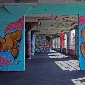 Abandoned Berkeley warehouse graffiti #2 by Suzanne Black - Buildings & Architecture Decaying & Abandoned ( abandoned, building )