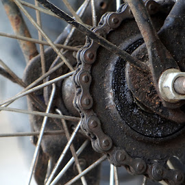 Freewheel by Prannoy Mathew - Abstract Macro ( abstract, cycle, freewheel, bike, chain, cycling )