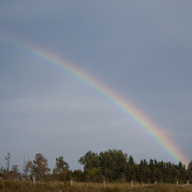 Country Rainbow by Dave Davenport - Landscapes Weather ( rain bow, weather, rainbow, rain, prism )