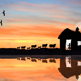 Skye Homecoming by Wendy Milne - Digital Art Places ( home, little girl, reflection, silhouette, sunset, art, sheep, digital )