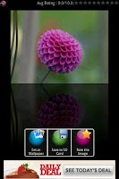 Screenshot of Crystal Flower Wallpapers