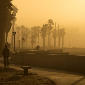 Foggy Harbor Sunrise by Eric Yiskis - City,  Street & Park  City Parks ( harbor, fog, silhouette, hueneme, sunrise, sidewalk,  )