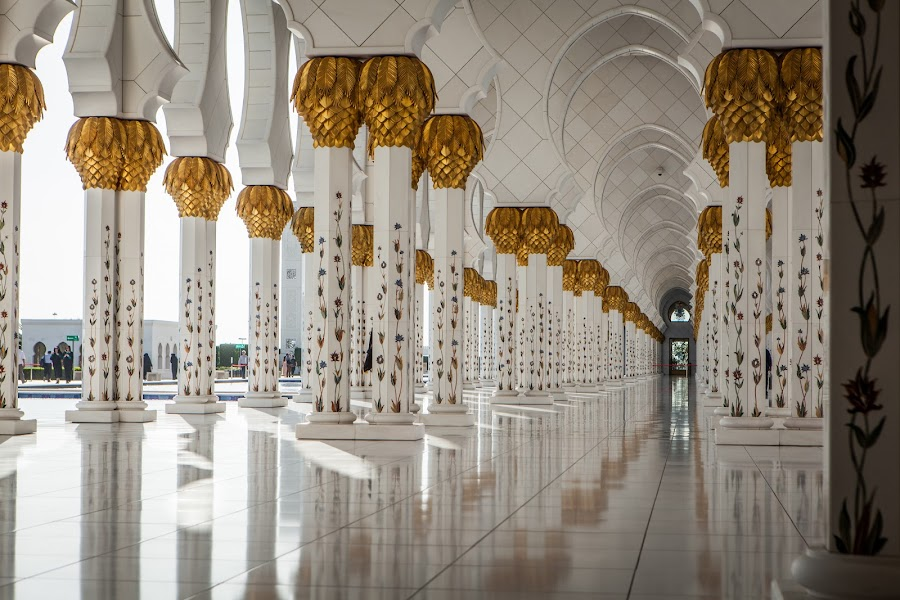 All in row by Paulius Jankevičius - Buildings & Architecture Architectural Detail ( mosque, corridor, uae, column, abu dhabi, gold )