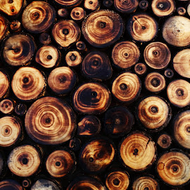 wooden pattern by Vivek Raut - Abstract Patterns ( wooden, polish wood, wood, woods, wooden log )