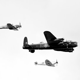 Battle of Britain by Nikita Brakespear-Sharp - Transportation Airplanes ( spitfire, wwii, hurricaine, black and white, airplane, world war two, war, military, world war ii, aircraft, royal air force, lancaster bomber, raf, lancaster, battle of britain )
