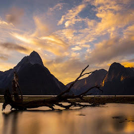 Milford Sound, NZ by Patto Nikonian - Landscapes Mountains & Hills ( milford sound, mountain, twilight, landscape, new zealand )