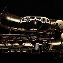 a piece of metal... by Almas Bavcic - Artistic Objects Musical Instruments