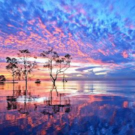 #Kenyamukan,  foto sunrise yang berhasil, dan membuat terkenal, salam jepret brother by Abdul Aziz - Landscapes Sunsets & Sunrises