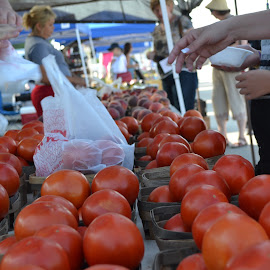 Farmers Market by Greg Moore - Food & Drink Fruits & Vegetables ( selling, market, tomato, food )