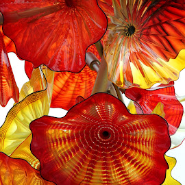 Flowers in Glass by Jody Frankel - Artistic Objects Glass ( chihuly, glass, flowers )