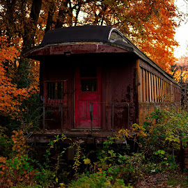 Tain in fall by Jay Anderson - Landscapes Travel ( old, autumn, railroad, fall, trees, train, leaves, dusk, woods, abandoned, color, colorful, nature )