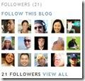 blogger followers