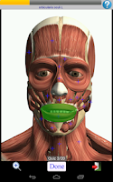 Screenshot of Visual Muscles 3D