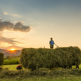 Hard work in Bucovina, Romania by Costin Fetic - Landscapes Sunsets & Sunrises ( clouds, work, mountain, colors, green, romania, landscape, sun, photography, mountains, sky, sunset, worker, summer, men, working, bucovina, landscapes )