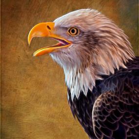 Eagle On Lookout by Bill Tiepelman - Animals Birds ( eagle profile, bird, eagle, eagle closeup, nature, fine art, bald eagle, wildlife, feather, animal, birding,  )